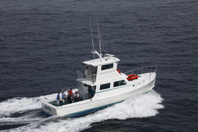 Rhode island sportfishing sport fishing ri for Ri fishing charters